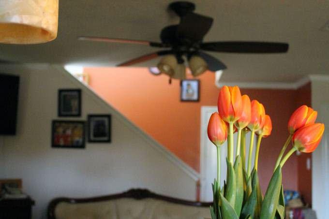 pomysl na pomaranczowe wnetrza